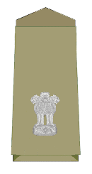 SP police level 11